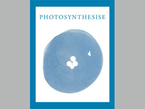 Photosynthesise